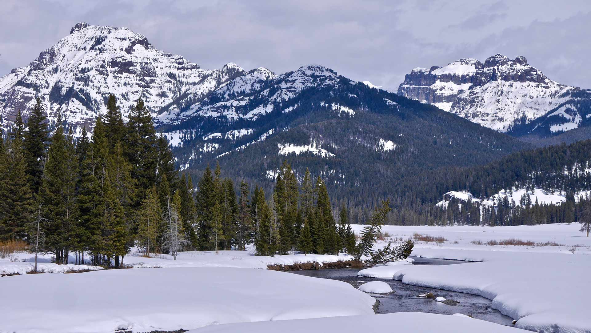 frozen river with snowy mountains and pine trees